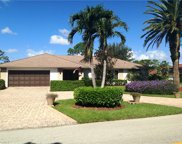 9902 White Sands Pl, Bonita Springs image