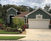 8248 Bridgeport Bay Circle, Mount Dora image