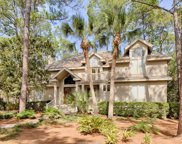 9 Piping Plover Road, Hilton Head Island image