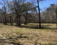 TBD Waccamaw River Dr., Conway image