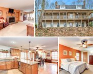 14829 BLACK ANKLE ROAD, Mount Airy image
