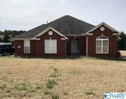109 Eagle Wing Drive, Decatur image
