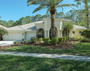 4953 Quill Court, Palm Harbor image