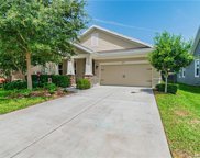 5917 Chert Hill Lane, Lithia image
