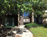 6158 Knoll Way Drive Unit 104, Willowbrook image