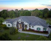 11560 Trotting Down Drive, Odessa image