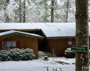 133 Rhododendron Loop, Linville image
