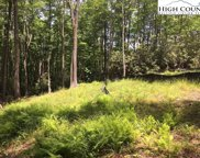 Lot 28 Twin Branches Road, Blowing Rock image