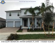 161 Glory Bower Drive, Winter Garden image