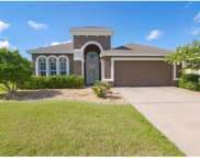 12320 Hammock Pointe Circle, Clermont image