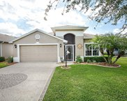 27110 Greenfly Orchid Lane, Leesburg image