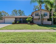 4302 Hollow Hill Drive, Tampa image