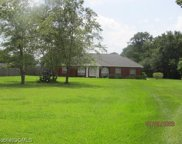 24173 County Road 71, Robertsdale image