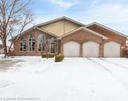 8718 Harvest View Lane, Tinley Park image