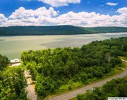 241 Lookout Mountain Drive, Scottsboro image