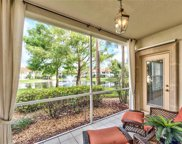 1036 Egrets Walk Cir Unit 101, Naples image