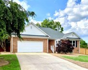 11 Stonefield Court, Greenville image