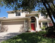 18156 Sandy Pointe Drive, Tampa image