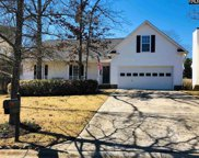 404 Audubon Oaks Way, Irmo image
