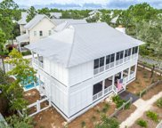 270 Spartina Circle, Santa Rosa Beach image