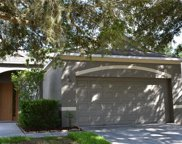 6108 Kiteridge Drive, Lithia image