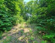 6045 Trillium Woods Drive, Harbor Springs image