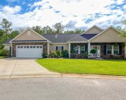 1012 Lynches River Ct., Myrtle Beach image