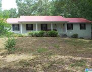 100 Clements Dr, Oneonta image