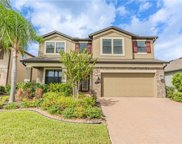 1531 Feather Grass Loop, Lutz image