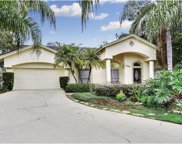 15302 Montreat Way, Tampa image