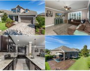 15904 Starling Crossing Drive, Lithia image