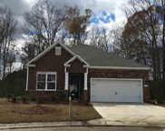 304 Cypress Springs Way, Little River image