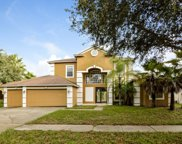 8364 Golden Prairie Drive, Tampa image