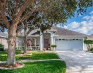 11213 Denmore Lane, Riverview image