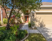 11635 Greensleeve Avenue, Tampa image