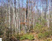 920 Red Sky Trail, Landrum image