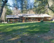 2652  Leaning Tree, Placerville image