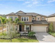 9289 Royal Estates Boulevard, Orlando image