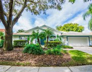 9104 Canberley Drive, Tampa image