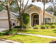 6133 Whimbrelwood Drive, Lithia image
