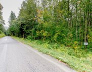 10175 350th Ave SE, Snoqualmie image