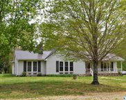 3625 Elkwood Section Road, Toney image