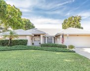 441 Lake Of The Woods Drive, Venice image