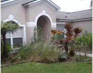 12707 Shadowcrest Court, Riverview image