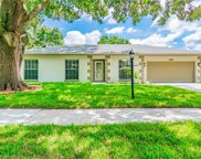 13814 Cherry Brook Lane, Tampa image