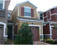 9662 Silver Buttonwood Street, Orlando image
