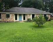 9107 Shadow Bluff Ave, Denham Springs image