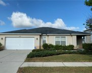 5209 Moon Shell Drive, Apollo Beach image