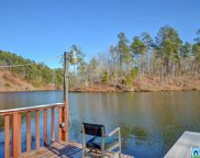 305 Co Rd 739, Clanton image