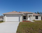 413 Athabasca Court, Poinciana image